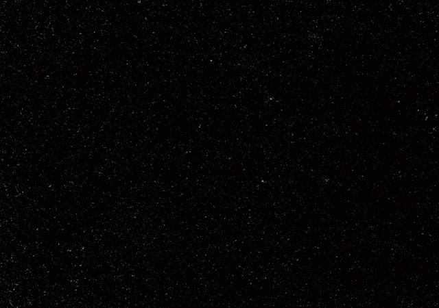 インド山西黒
